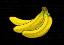 Blu Winterharte Banane
