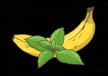 Blu Wohlige Bananen-Minze