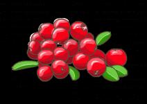 Blu Gesunde Cranberry