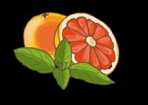 Blu Herbe Grapefruit-Minze