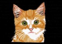 Blu 'Softgreen' Katzengras