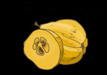Blu Robuste Nordische Zitrone