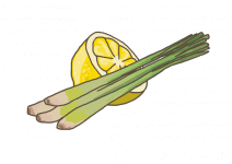 Blu Indisches Zitronengras