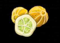 Blu Erfrischende Zitronengurke