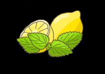 Blu Himmlische Zitronenmelisse