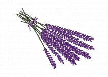 Blu Essbarer Lavendel