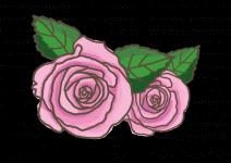 Blu Essbare Rose Rosella®