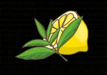 Blu Erfrischende Zitronenverbene