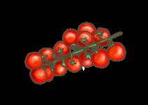 Blu Zuckersüsse Cherry-Tomate