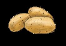 Blu Geliebte Kartoffel