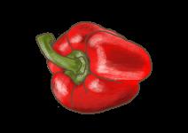 Blu Rote Snack-Paprika