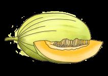 Blu Tropische Mango-Melone
